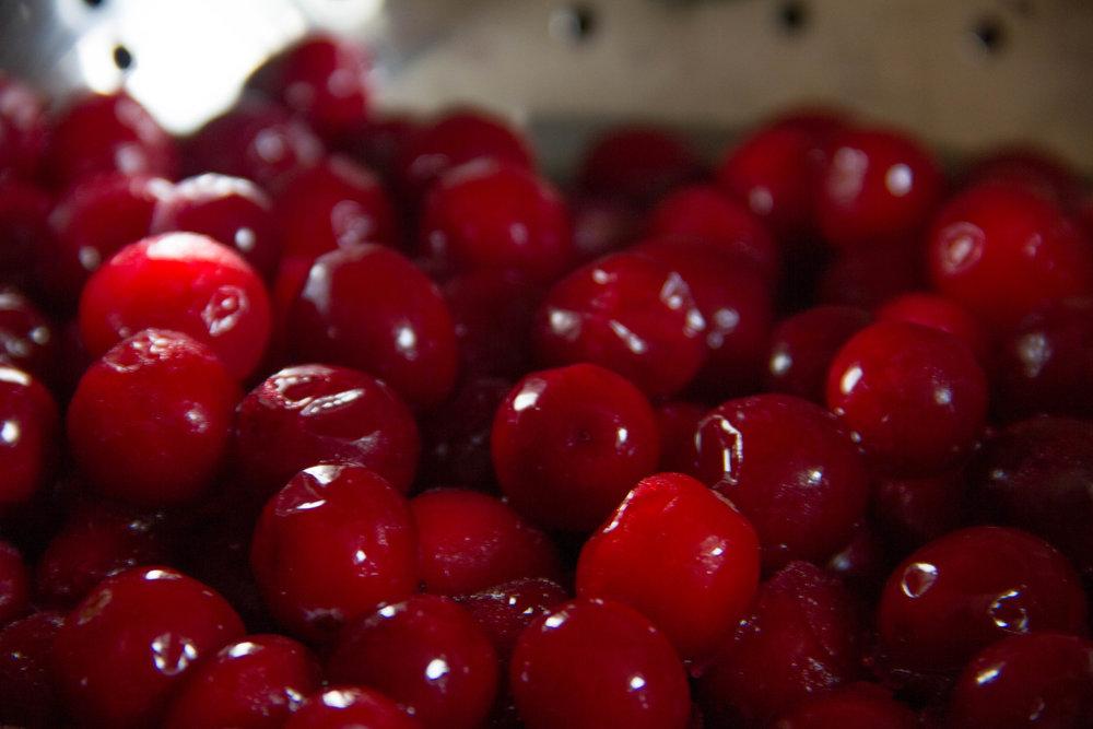 Cape Cod Cranberries