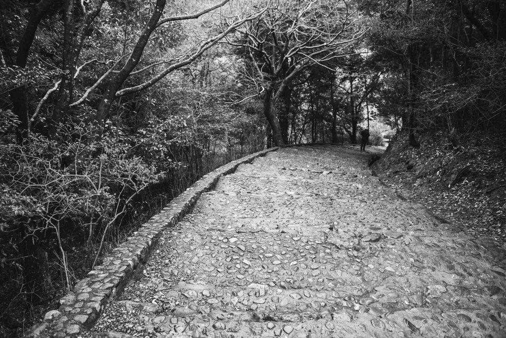 Japan Trip Part 1- Kyoto-64.jpg