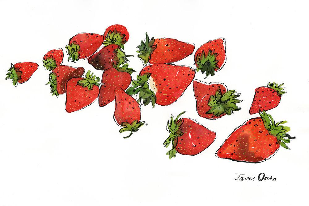 Strawberries-James-Oses.jpg