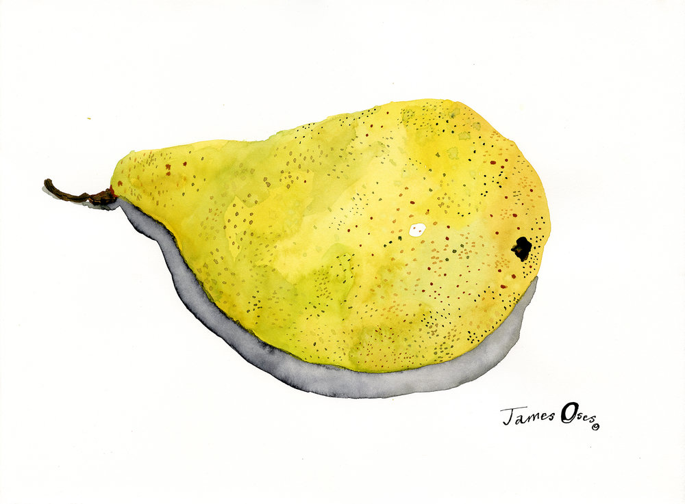 Williams-pear-James-Oses.jpg