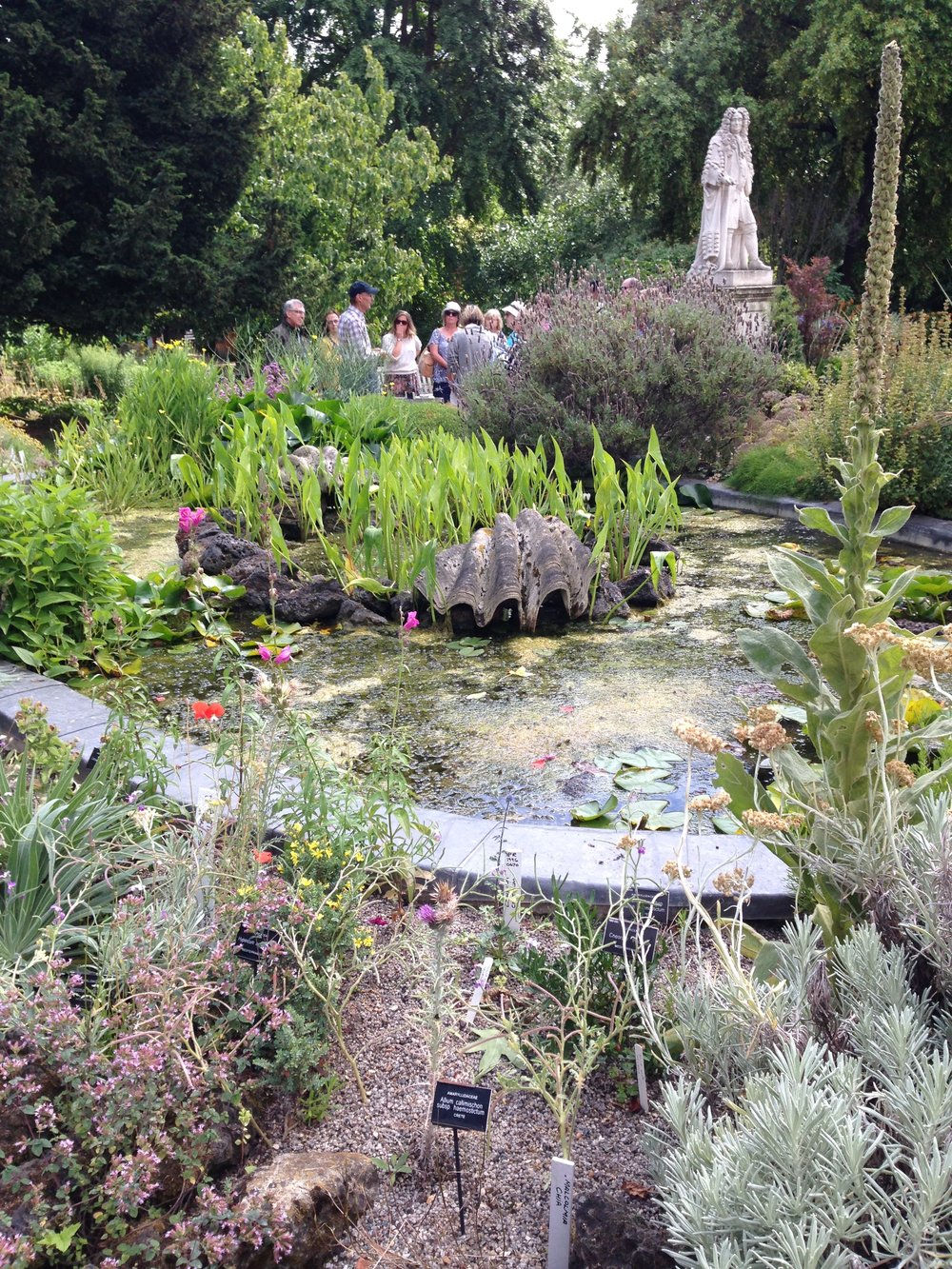 The Pond Rockery at the Garden - one of the oldest in Europe.