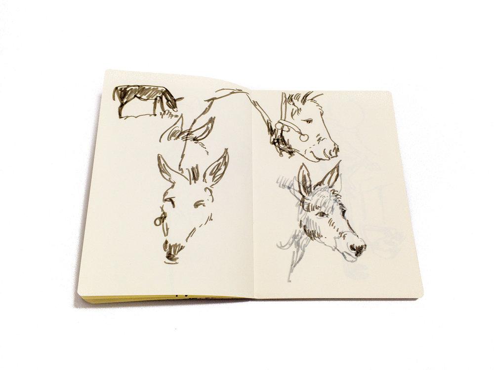 Sketchbook-17.jpg
