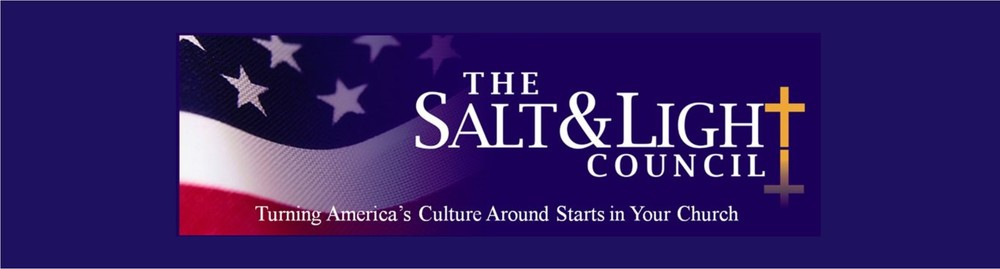 Salt & Light Council Banner