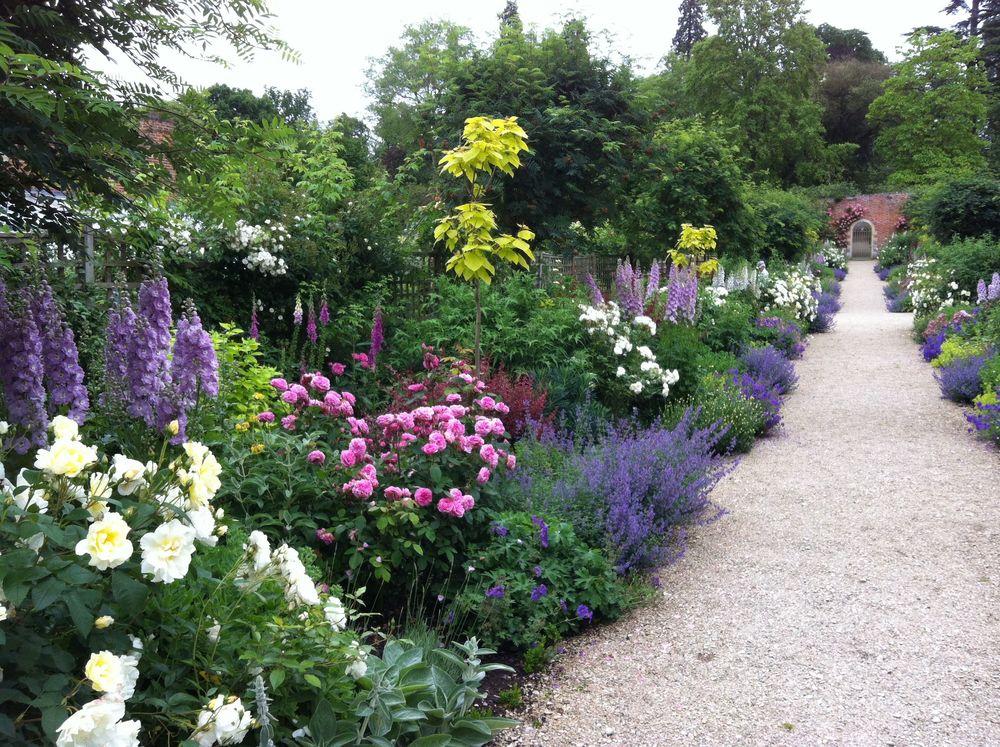 Services cornish garden consultant for Shrubs for garden borders