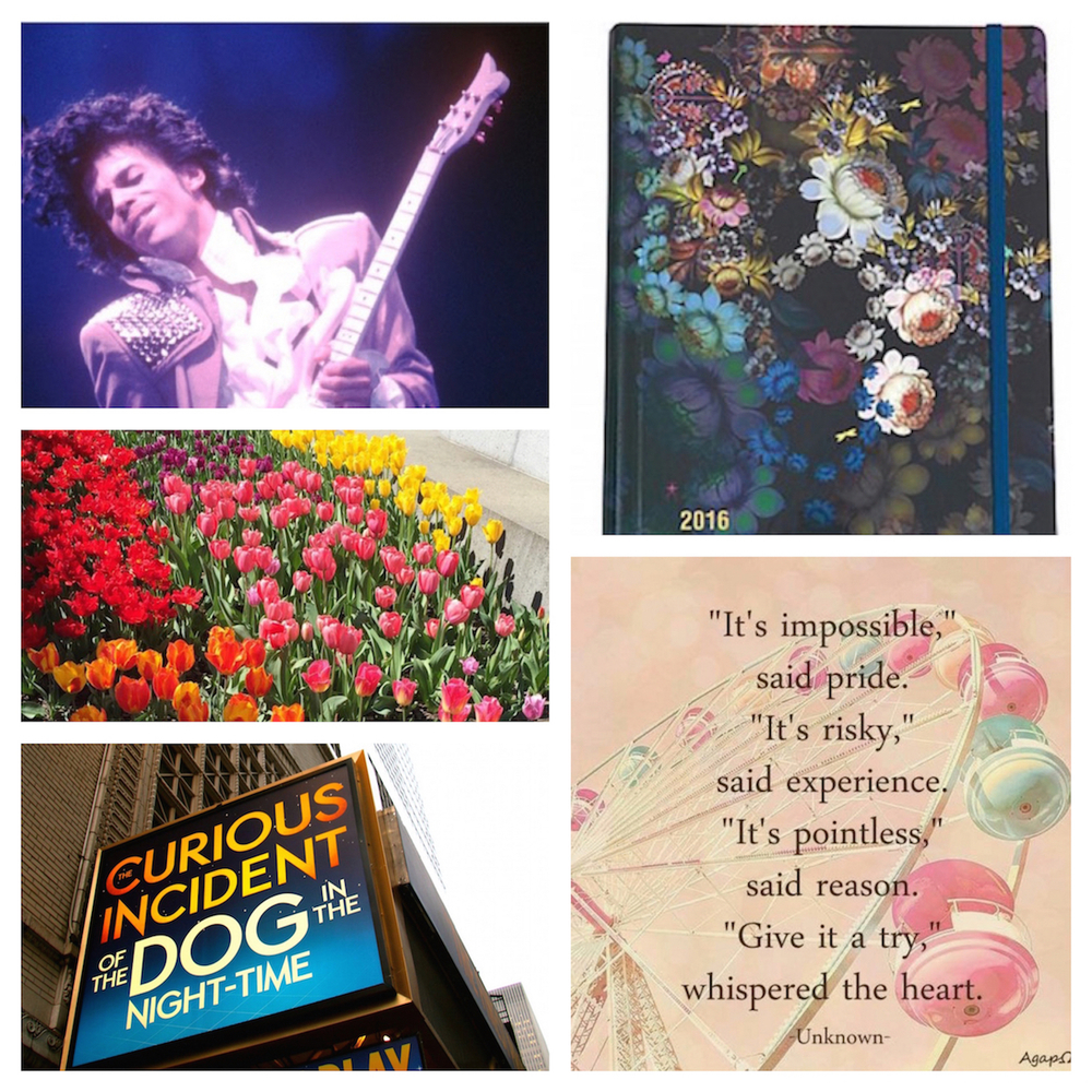 Sources Clockwise from top left: Prince, Planner, Internet Goodness, Curious Incident, Me (My photography skills slay right?)