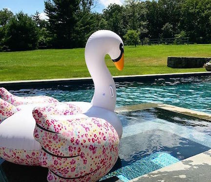 "Yes, this is my mom's swan, she calls him ""Swannie."" via: @makelymagic"