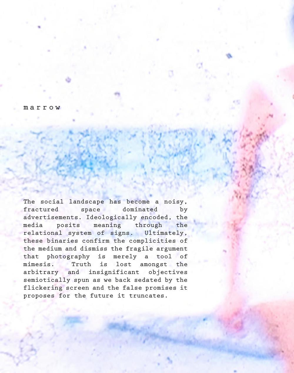 **Entropy-ArtistStatementBook-Original**-web-page-208.jpg