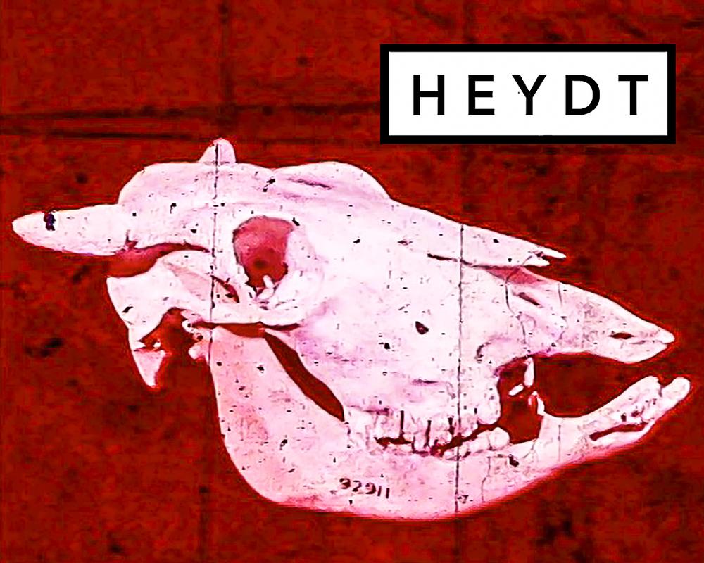 HEYDT-Brand-59.jpg