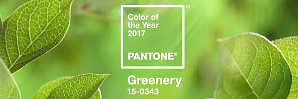 COLOR OF THE YEAR 2017.png