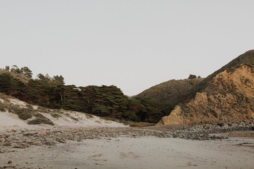 sara&patrick-bigsur-california-engagements-2019-1412.jpg