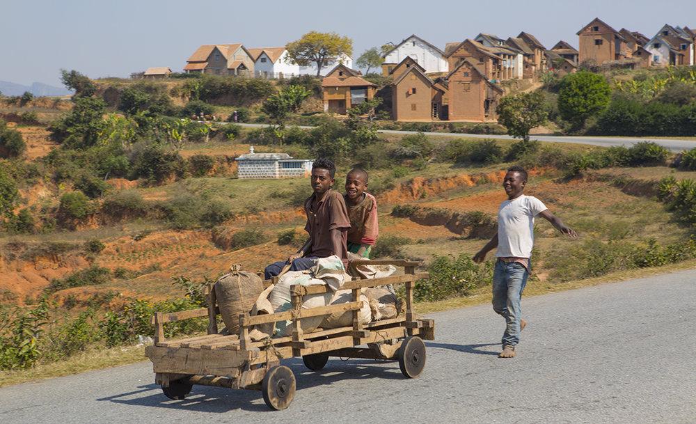 Das Haupt-  transportmittel  Madagaskars ist überall zu finden.