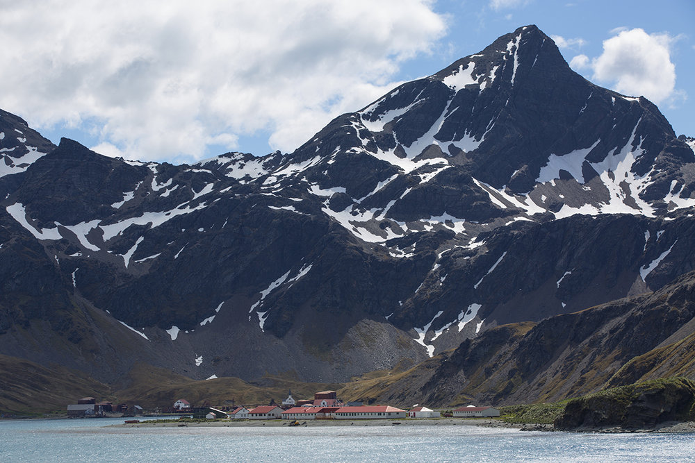 Grytviken  Südgeorgien