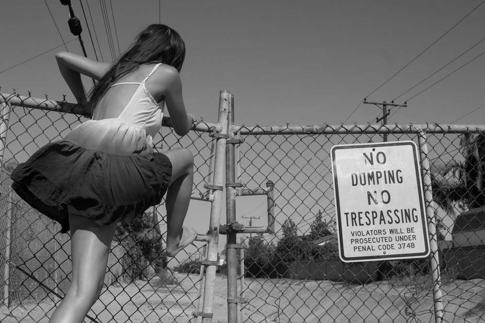 No trespassing (1 of 1).jpg