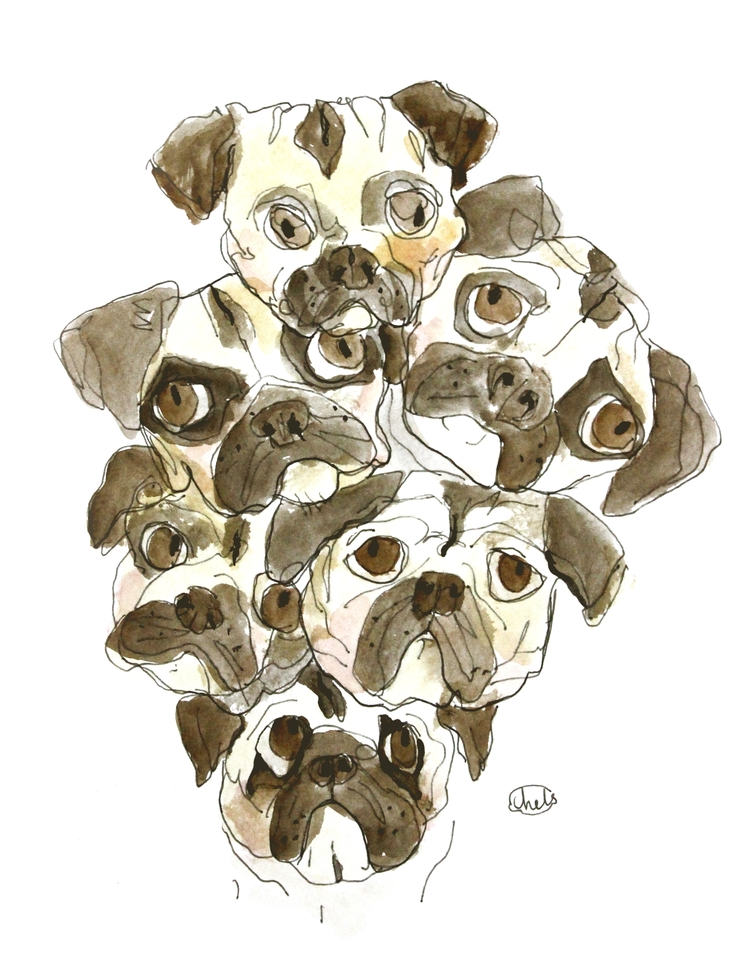 BUNCH OF PUGS