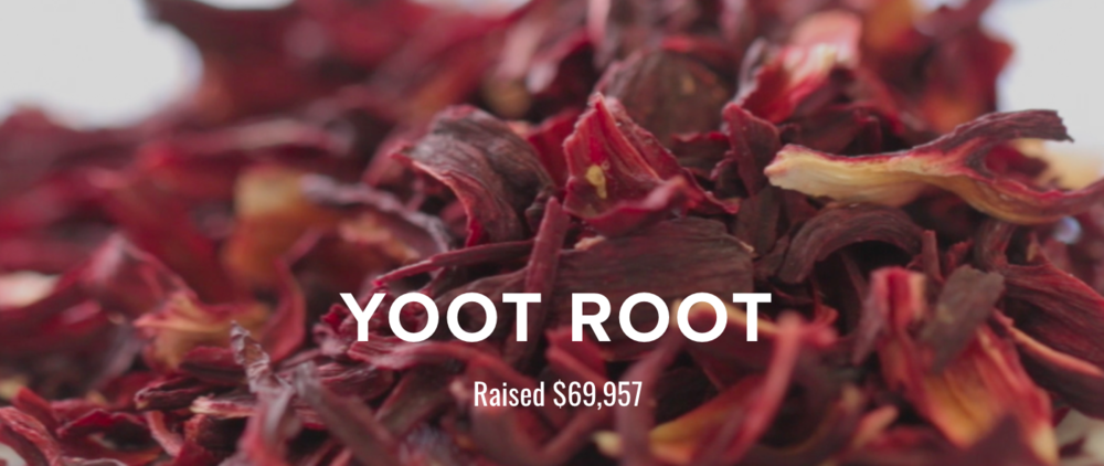 View the Yoot Tea's Indiegogo project here.