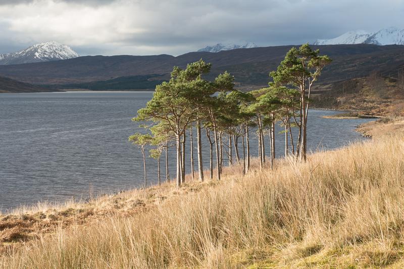 Schotland-12.jpg