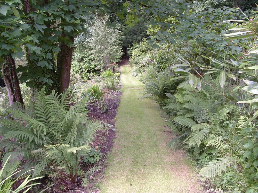 An inviting pathway