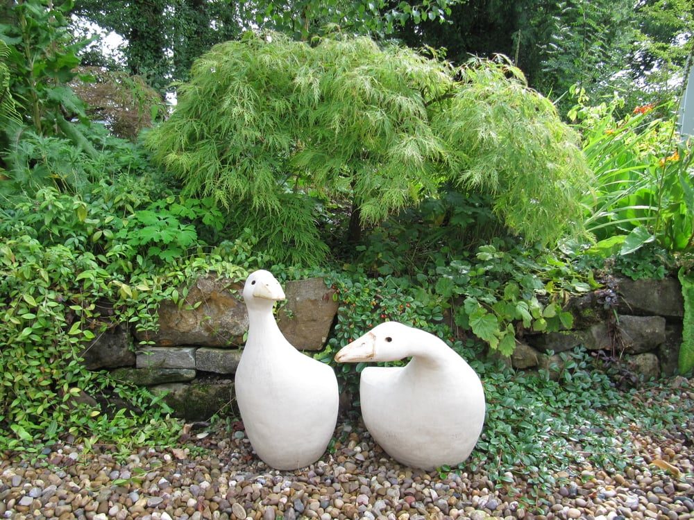 Abstract geese shelter under an Acer palmatum dissectum in the garden of a ceramic artist near Ross on Wye.