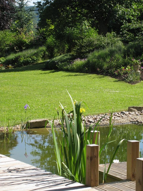 A large lawn slopes down to a pebble beach to allow easy access to the pond for people and wildlife.