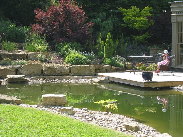 A timber deck over water offers a tranquil place to sit and watch dragon flies for all ages in this garden open to visitors under the NGS.
