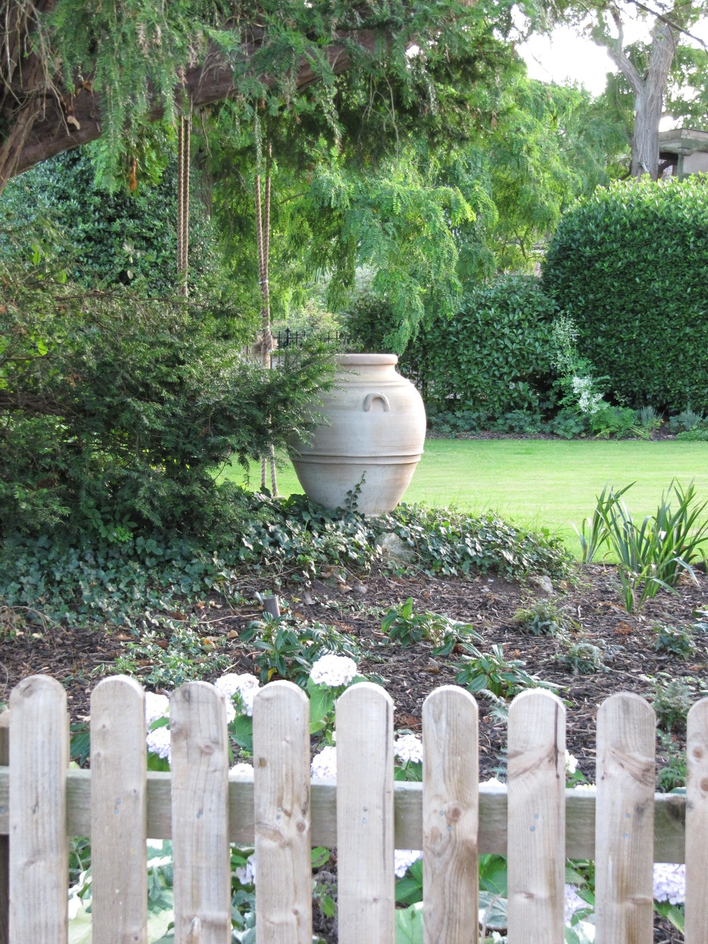 A simple terracotta urn perfectly placed in the ivy beneath an old yew tree, Taxus baccata.