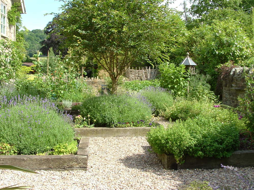 A symmetrically arranged potager garden where timber edges beds surround an old fruit tree