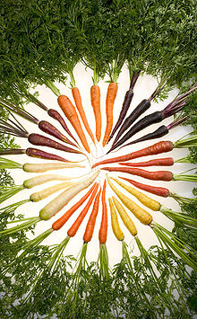 Carrots_of_many_colors.jpg