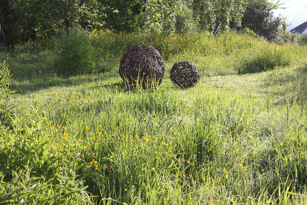 Woven willow balls in buttercup meadow.JPG