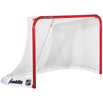 Picture of an ice hockey goal net
