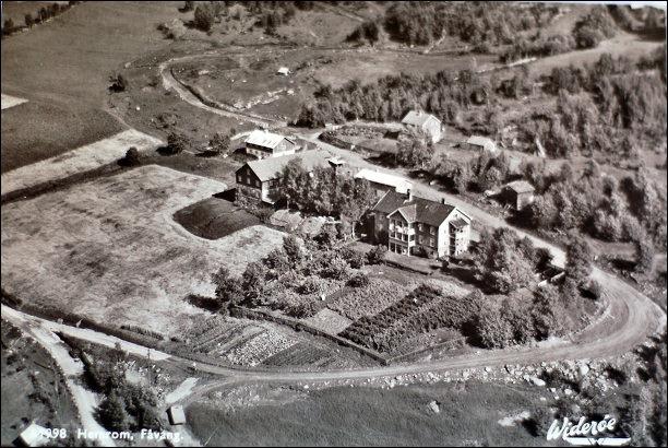 Gamlehjemmet Hemrom på Fåvang i Gudbrandsdalen hadde både gård med husdyr og en stor og god grønnsakshage på 50 tallet. Fortsatt var selvberging en vesentlig del av de fleste institusjoners livsgrunnlag. Min familie leide Hemrom en periode på 70 tallet og bodde der i 3 år.