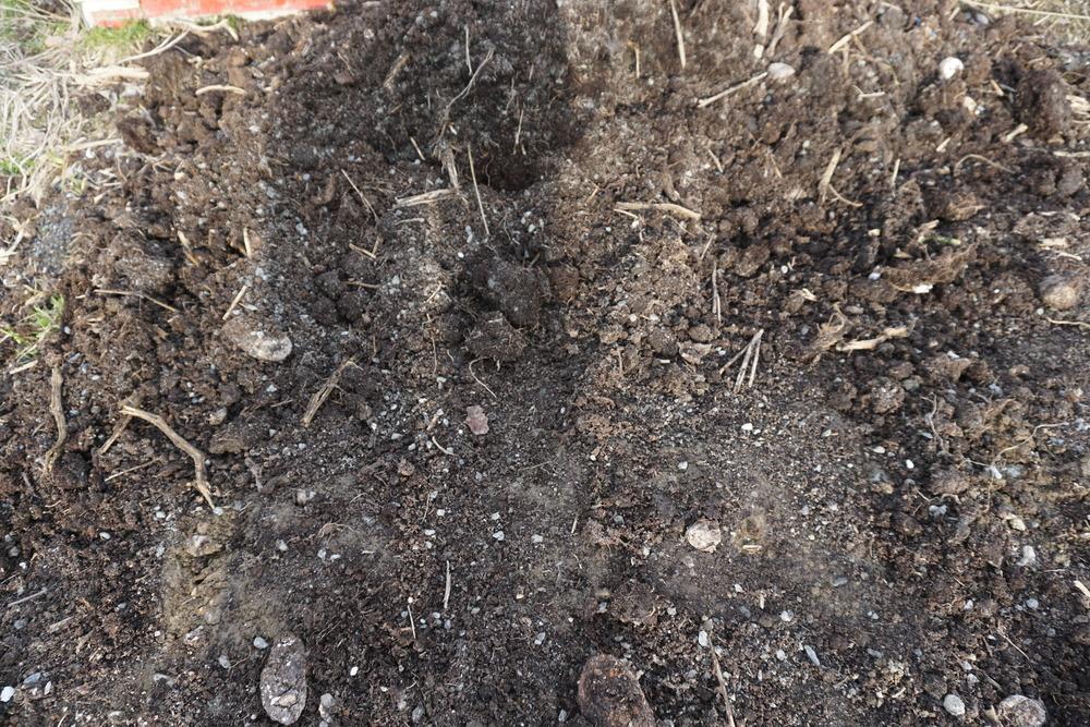 Godt omdannet kompost fra husholdnings og hageavfall er en viktig del av komposten.