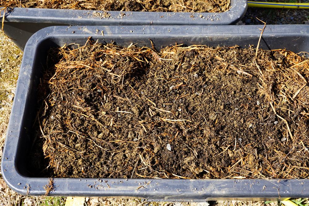 Leirjord, kompost og gammelt gress blandet sammen og fylt i plastbakker som skal stå i veksthuset.
