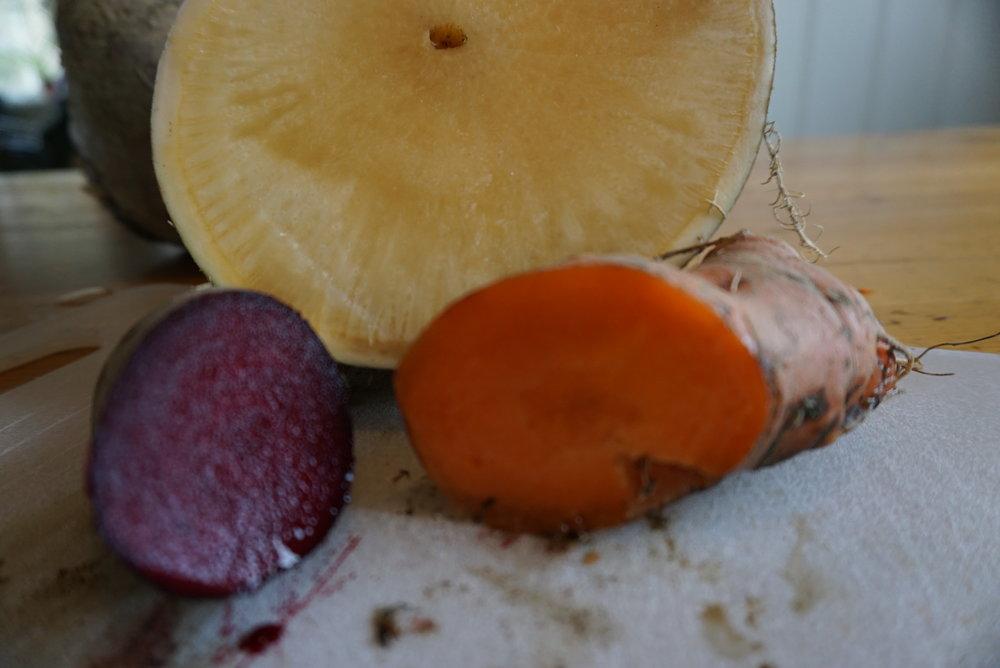 Smak farge og konsistens var utmerket på rødbetene og gulrøttene, mens noe av kålrota fikk tydelige frostskader.
