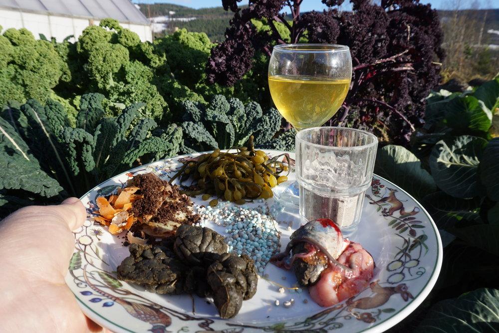 Kompost fra kjøkkenet, tang og tare, urin, aske, fiskeslo, husdyrgjødsel og handelsgjødsel er alle rike kilder til plantenes livsnødvendige næringsstoffer