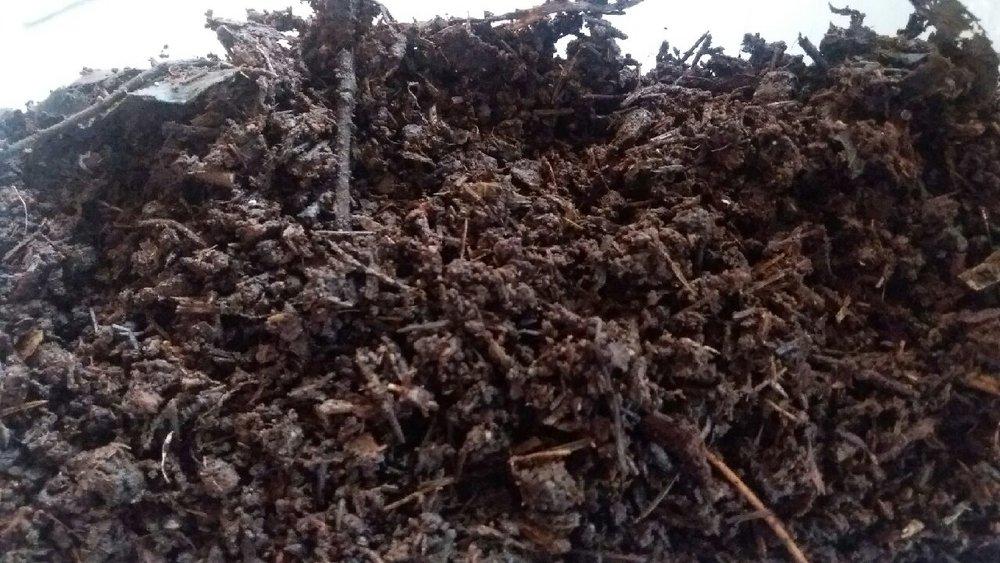 Godt omdannet tangkompost er en rik kilde til plantenæringsstoffer og en god humustilsetting til kystens ofte skarpe sandjord. Bruk av tang og tare er en god måte å tilbakeføre utvasket næring fra verdens jordbruksarealer.