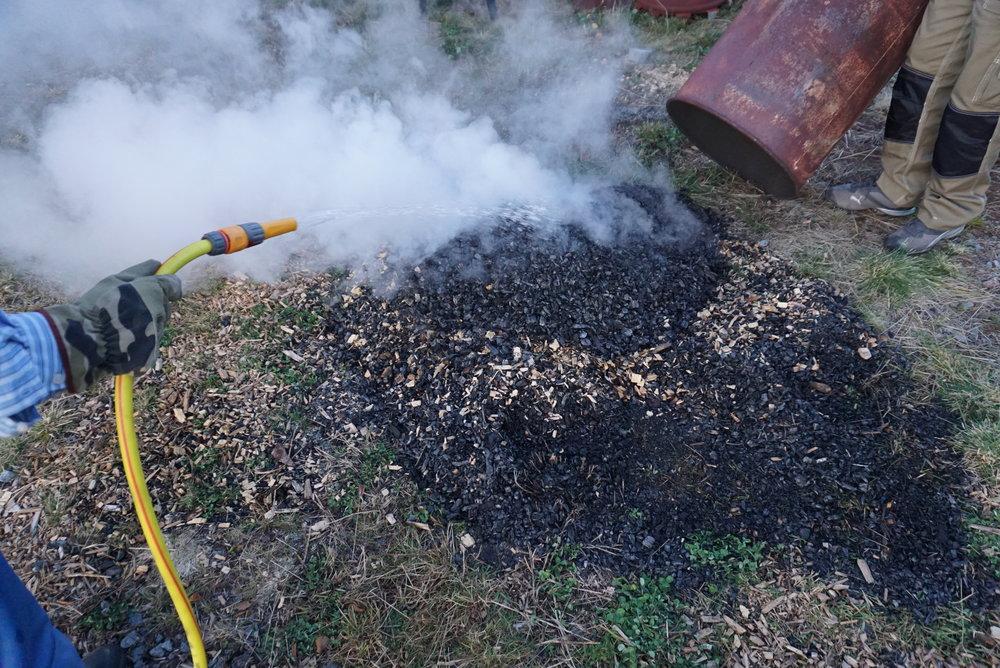 Kullet er ferdig og tømmes ut på bakken før det etterslukkes med vann. At det er en del ubrent flis igjen, gjør ingen ting -kull og flisrester skal uansett blandes inn og komposteres med annet avfall noen måneder før bruk.