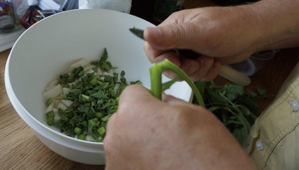 Velsmakende stilker av reddik, snittes opp og går rett i salaten. Tas de før blomsten åpner seg, er de stort sett uten trevler.