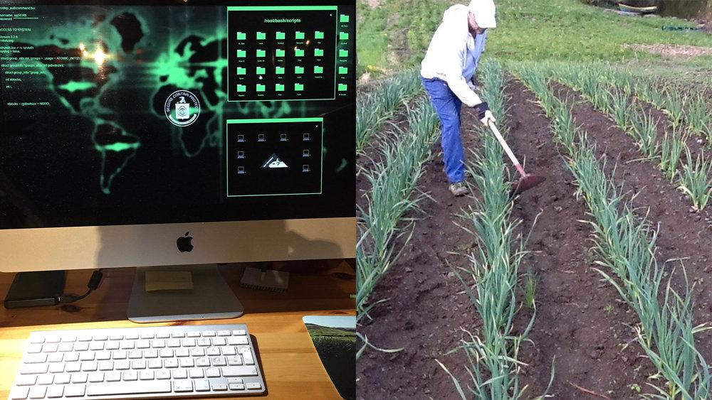 Kan virkelig hacking tvinge samfunnet vårt i kne? Alt tyder på at det er mulig og at vårt mest rasjonelle svar kan bli mer omsorg for hverandre og hakking i egen grønnsaksåker.