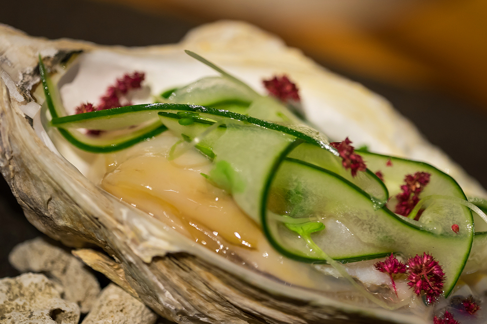 Oysters with cucumber and basi salad