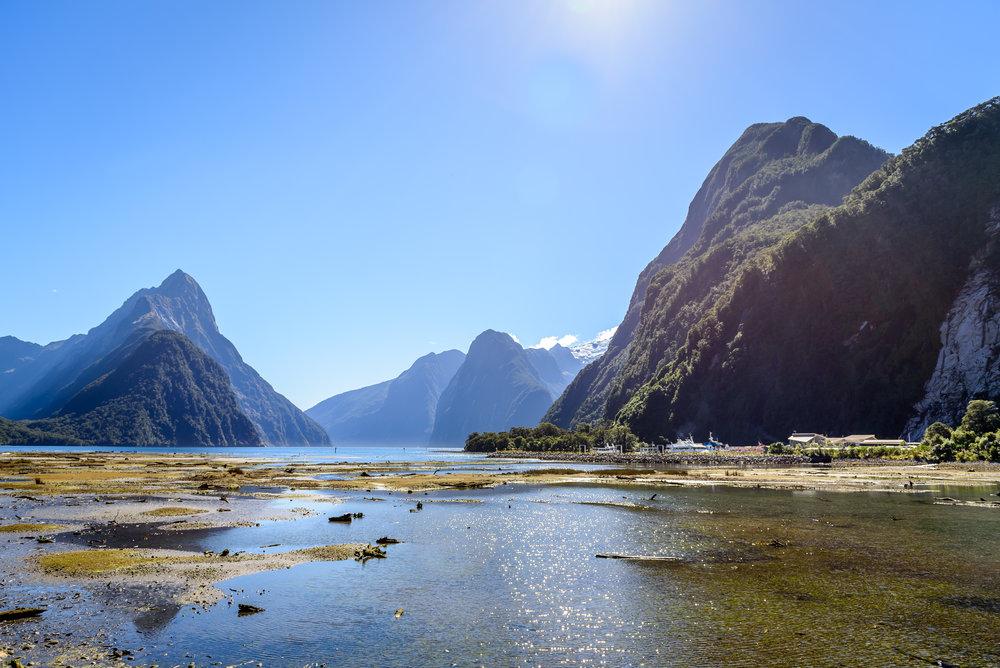 NZ-106.jpg