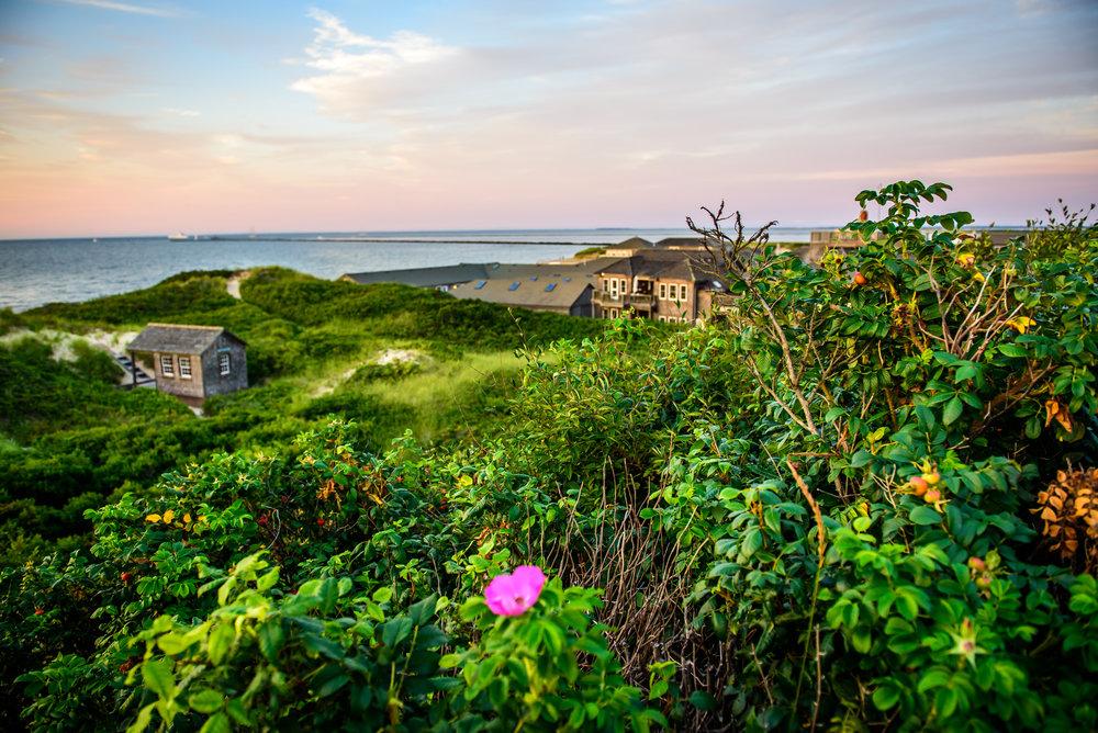 Nantucket8.8-11.jpg
