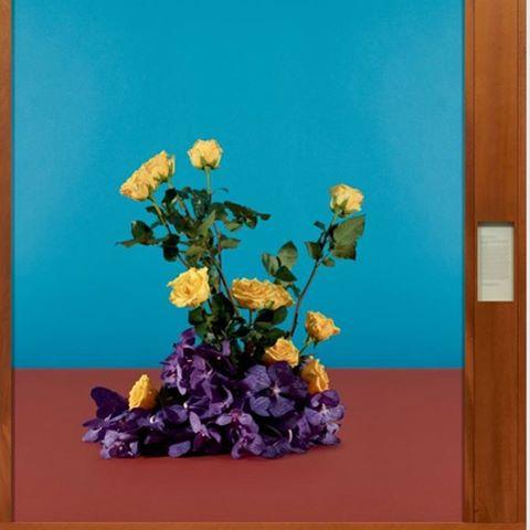 Flowers obsession 🌼🌷🌾#tarynsimon #colors #gagosian