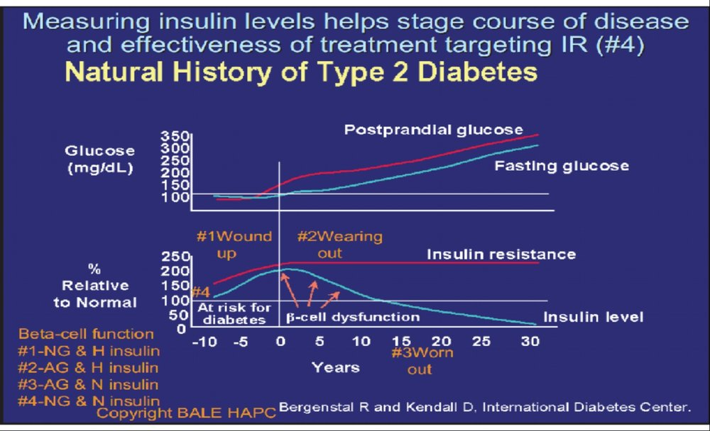 Reverse INsulin Resistance by reducing Insulin levels by fasting and avoiding Sugar and Refined carbohydrates