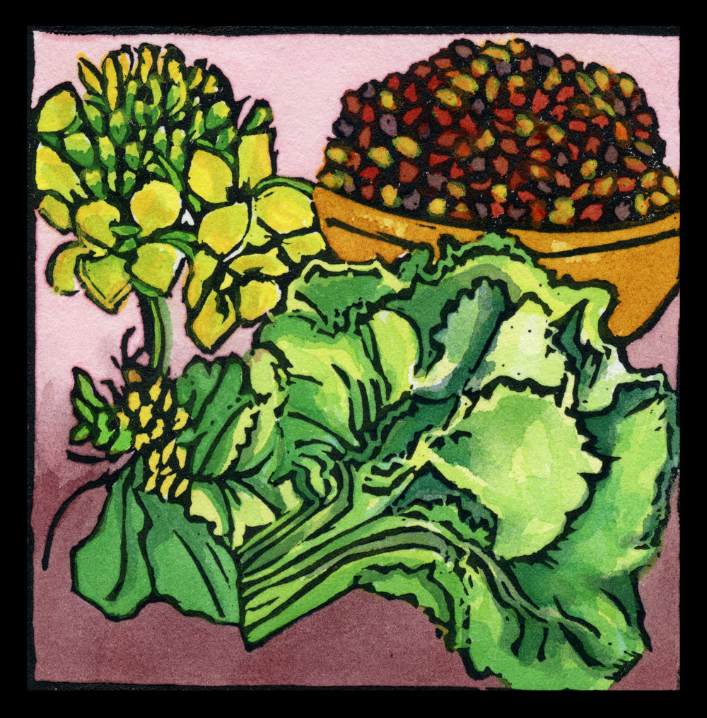 Indian-Mustard-red-cropped-digi-web.jpg
