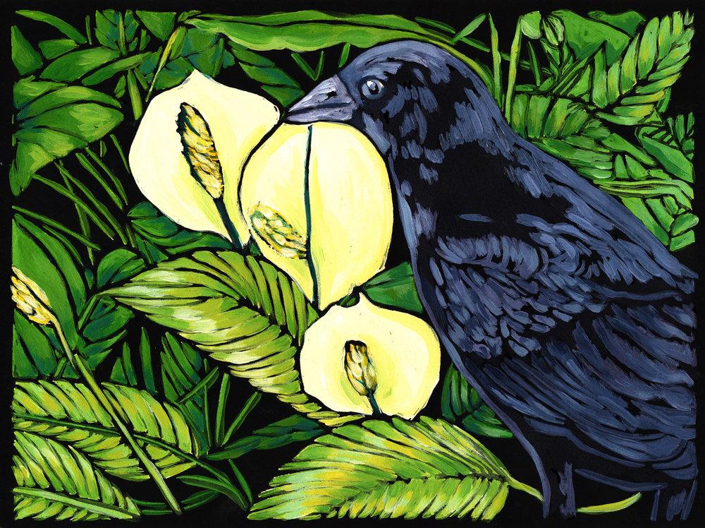 Crow with Spathyphillum