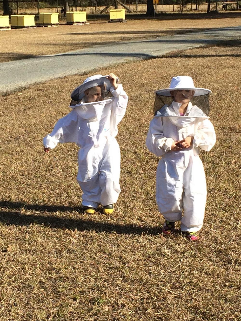 Beekeeper Services