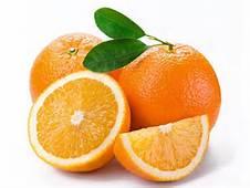 orangeplant.jpg