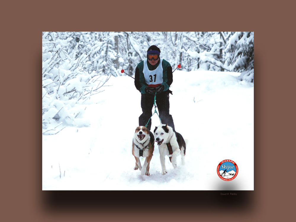 Michael, keeper of Azul, the moose chased skijoring rainbow aura dog and his sister Aeila the Princess...
