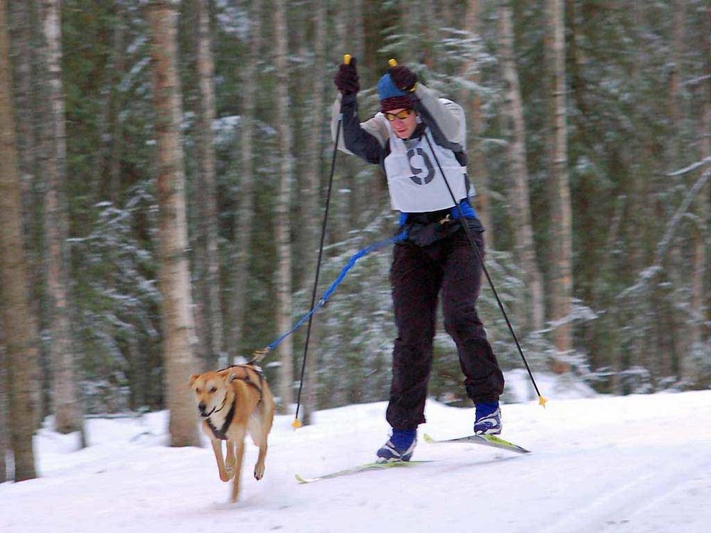 Skijor-Chugiak-10Dec06-066.jpg