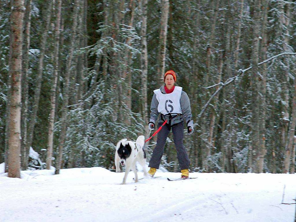 Skijoring-Chugiak-10Dec06-058.jpg